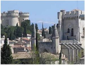 Chateau Avignon